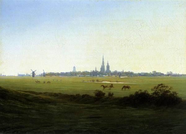 Meadows Near Greifswald